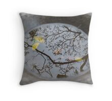 Zen Birdbath Throw Pillow
