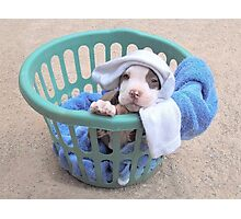 What Laundry? Photographic Print