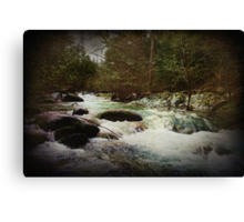 Rushing Canvas Print