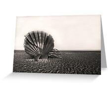 Scallop Sculpture Greeting Card