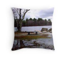 Overflowing lake Throw Pillow