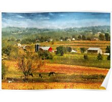 Country - Cows Grazing Poster