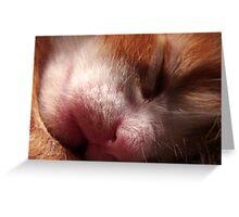 Sleepy Face Greeting Card