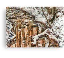 Winter - Natures Harmony Canvas Print