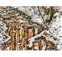 Winter - Natures Harmony Photographic Print