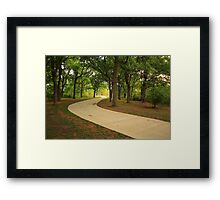 The Road on spring Framed Print