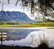 Mount Roland by Elaine Short