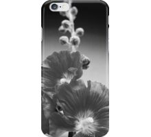 Black and White Hollyhock close-up iPhone Case/Skin