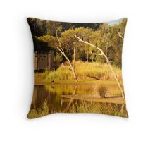 Reflections on the water at Greenfields Wetlands Throw Pillow