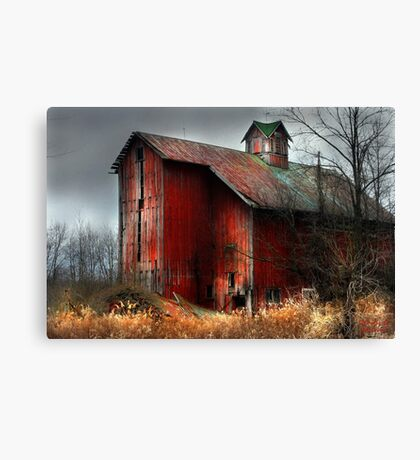 """Still Golden"" Canvas Print"