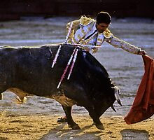 Bullfighting−6、SPAIN by yoshiaki nagashima