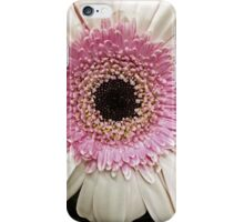 Pink Ring Gerbera Daisy iPhone Case/Skin