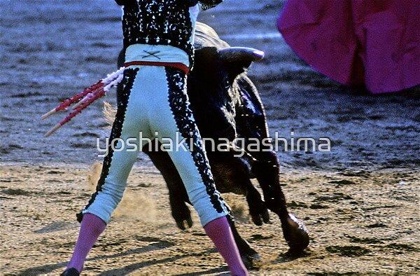 Bullfighting−8、SPAIN by yoshiaki nagashima