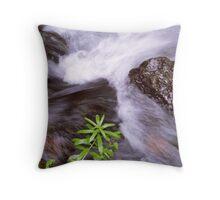 Stream Flow Throw Pillow