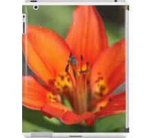 Wood Lily, Jasper National Park, Alberta, Canada iPad Case/Skin