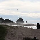 Cannon beach by Yacoub Hilweh