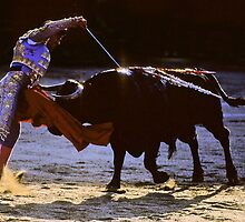 Bullfighting−10、SPAIN by yoshiaki nagashima