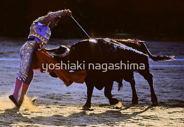 Bullfighting−10、SPAIN by yoshiaki nagashima