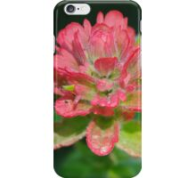 Indian Paint Brush, Jasper National Park, Alberta, Canada iPhone Case/Skin
