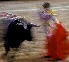 Bullfighting−14、SPAIN by yoshiaki nagashima