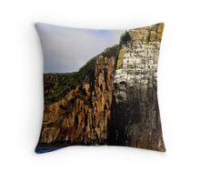 photoj Tasmania Wlderness Tour Cruises Throw Pillow