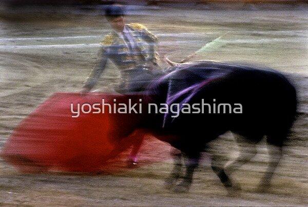 Bullfighting−17、SPAIN by yoshiaki nagashima