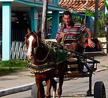 Horse and cart, Vinales, Cuba by buttonpresser