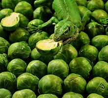 Eat your brussel sprouts by Jeff Cook