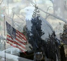 Eagle and Old Glory by Chappy