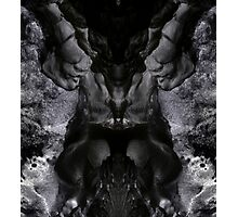 Natures Faces #7 Photographic Print