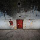 Red Door by Tony Lomas