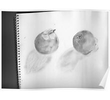 Mangosteens Graphite Poster