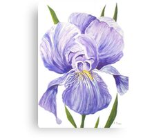 Giant Iris Canvas Print