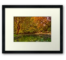 Autumn at Alfred Nicholas Memorial Gardens Framed Print