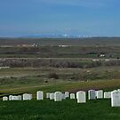 Little BigHorn Battlefield, Montana, USA by AnnDixon