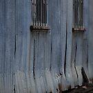 Tin Row by Catherine Davis