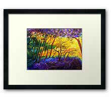 Sunkissed Valley  Framed Print