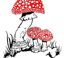 Amanita Muscaria by scott allison