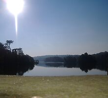Trentham Estate ~ Lake by Laura Yates