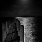 Full Moon Reflection by Briarah1969