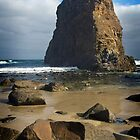 Lion Rock, South Coast of Tasmania by David Bellamy