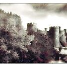 Conwy Castle North Wales by Mal Bray