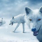 Arctic Wolf Pack by Mal Bray