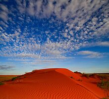 Dunes - Simpson Desert, NT by Bartt