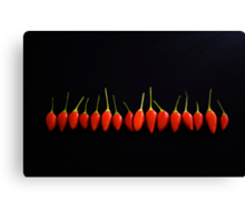 Little Red Things All in a Row Canvas Print