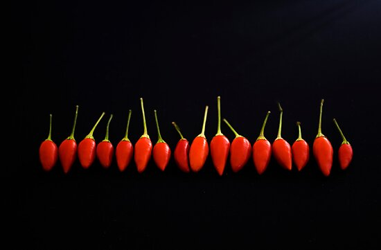 Little Red Things All in a Row by Wendi Donaldson Laird