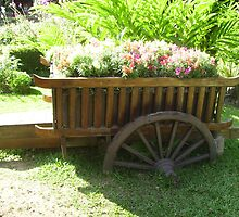 Wagon with Flowers. by Mywildscapepics