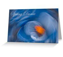 Spring Dance - Crocus Flower  Greeting Card
