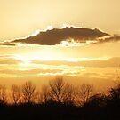 Clouds by Paul Morley
