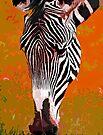 A Zebra's Perspective by Ryan Davison Crisp